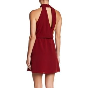NWOT Haute Hippie | Asymmetrical Back A-Line Dress